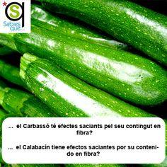 El #Calabacin tiene efectos saciantes por su contenido en #fibra / El #carbasso té efectes saciants pel seu contingut en #fibra