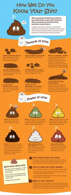 Get Bodylicious Diaries: Do You Know Your Poop? Your poop can tell you issues with your diet or even your health.