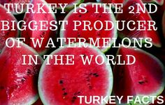 Listing interesting facts about Turkey including historical, food, drink, people, travel and geographical snippets that you probably didn't know. Turkey Facts, Turkey Country, Republic Of Turkey, Marmaris, Turkish Recipes, Food Facts, Black Sea, Mediterranean Sea, Interesting Facts
