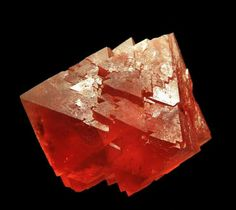 Fabulous Fluorites! Red very very rate! Of course I want it. Lol.