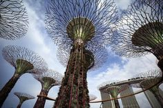 8Supertrees-of-Singapore-just3ds.com