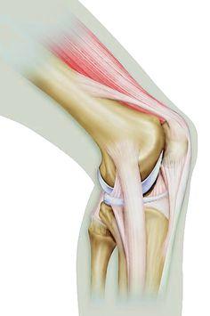 Knee Strength Workout - Runner's World