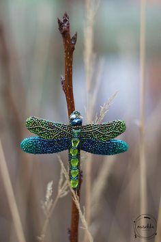 Bead Embroidered Dragonfly Brooch
