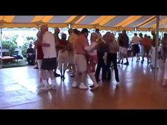 37 Cynor Classics, Schanda and Old Grey Mare Polka Polka Music, Church Picnic, Chicago Style, Dancer, Grey, Classic, Gray, Derby, Dancers