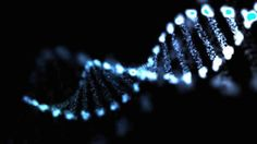 New Genes Associated With Cognitive Ability Identified