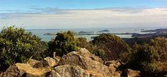 Coromandel Adventures provides a great range of Coromandel tours and adventures that will allow you to see some of the hidden secrets on the Coromandel - things only the locals know about! Castle Rock, Back In Time, Day Trips, The Locals, Tours, Explore, Adventure, Water, Outdoor