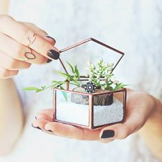 A pretty little home for your ring by Waen