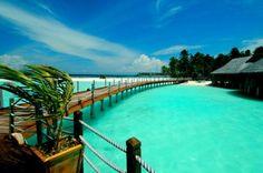 Perfect summer vacation!