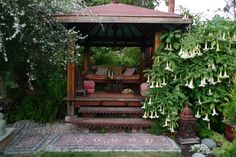 Tea House and Brugmansia in bloom. A backyard tea house! Life does not get any more civilized. From the garden of Jeffrey Bale. Outdoor Rooms, Outdoor Gardens, Outdoor Living, Garden Huts, Japanese Tea House, Mosaic Stepping Stones, Sunken Garden, Meditation Space, Meditation Garden