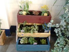 Recycled pallet 3-tier planter (made by my sister)