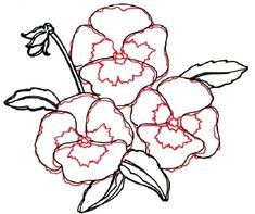 When drawing a pansy, draw the details of the petals and flowers including wavy lines and curved lines.