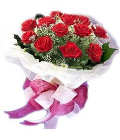 valentine day week rose day