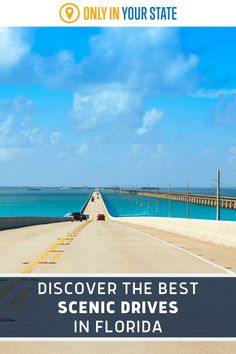 Enjoy the best and most beautiful drives in Florida on these amazing scenic byways. They're perfect for a mini road trip and several are coastal - great for summer. Best Bucket List, Hidden Beach, Travel Things, Swimming Holes, Road Trip Usa, Natural Wonders, Travel Destinations, Coastal, Scenery