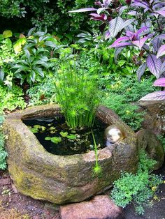 Mini garden Pond – Tips and Examples of Beautiful Small Garden Design Ideas… - Mini Garden Dream Garden, Garden Art, Garden Design, Easy Garden, Bog Garden, Bamboo Garden, Garden Compost, Gravel Garden, Garden Oasis