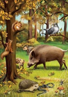 Illustrations for the russian publishing house Azbookvaric to the children encyclopedia Seasons of the year in the forest.It is not big book: 5 landscape-pictures of the forest in different seasons of the year and differenrt time of a dayand 5 pictu… Forest Animals, Woodland Animals, Animals And Pets, Funny Animals, Wild Animals, Graffiti Kunst, Les Gifs, Digital Art Gallery, Seasons Of The Year