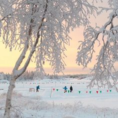 Canada's Top Outdoor Ice Skating Rinks | Keep Exploring