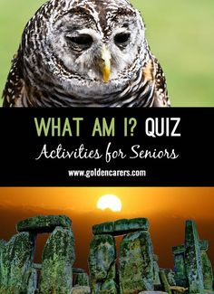 A fun quiz for seniors that leads to discussion and reminiscing! After each riddle ask: What am I? Senior Citizen Activities, Elderly Activities, Free Activities, Learning Activities, First Site, Trivia Quiz, Day Work, Riddles, Assisted Living