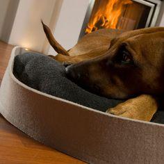ARENA Hundekorb in Filz mit Rhodesian Ridgeback, 2 Größen, 6 Filzfarben, 9 Kissenfarben