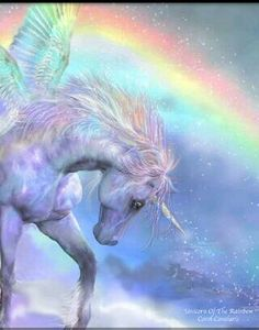 Unicorn & rainbow