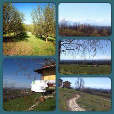 Una giornata di inizio primavera in Piemonte #langhe