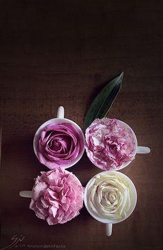 Teacups and Flowers Arranjos florais em xícaras - Blog Pitacos e Achados - Acesse: https://pitacoseachados.wordpress.com - https://www.facebook.com/pitacoseachados - #pitacoseachados