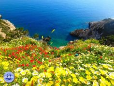 Paardrijden op Kreta Griekenland Abstract Landscape Painting, Landscape Paintings, Heraklion, Paradise On Earth, Crete Greece, Climbing, Paths, Hiking, Mountains
