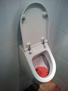 urinal w/ toilet cover?