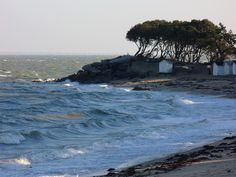 Noirmoutier- an island off the coast of Vendee, they make the most wonderful fleur de sel.
