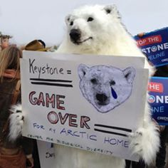 Mr. President, this Thanksgiving pardon ... the polar bear  by rejecting the Keystone XL and phasing out other deadly fossil fuels driving polar bears -- and the rest of us -- into hot water. Please SIGN and share this action. Thanks.