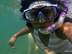 Snorkelling Trips in Durban, South Africa - Dirty Boots Adventure Activities, Adventure Tours, Parrot Fish, Wetland Park, Best Swimmer, Shark Diving, Kwazulu Natal, Rock Pools, Snorkelling
