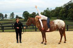 OHM Virginia's Equestrian Yoga Paradise!