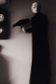 Art Photography by Laura Makabresku (9)