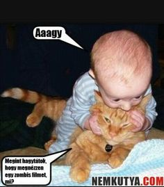 baby playing with cat, zombie funny - Dump A Day Memes Humor, Funny Animal Memes, Funny Animal Pictures, Funny Images, Funny Photos, Funny Cats, Funny Animals, Cute Animals, Funniest Animals
