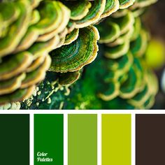 Color Palette #2807 | Color Palette Ideas | Bloglovin'