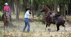 Out-of-Control Trail Horse! Do you know what to do on the trail when your horse just won't settle down—and even tries to bolt? These expert tips will get your horse back. Trail Riding, Horse Riding, Western Riding, Horse Information, Clinton Anderson, Horse Exercises, Horse Care Tips, Horse Training Tips, Equestrian Outfits