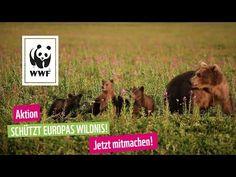 Keep Nature Alive - WWF Deutschland