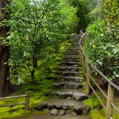 95 Fantastic Side Yard Garden Pathway Landscaping Ideas - All For Garden Garden Stairs, Garden Bridge, Portland Japanese Garden, Portland Garden, Outdoor Stairs, Sloped Garden, Natural Garden, Backyard Landscaping, Landscaping Ideas