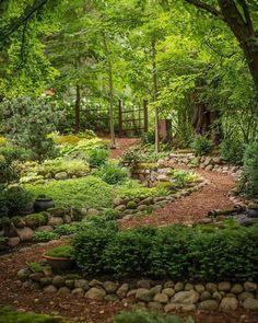 Dale Sievert's amazing shade garden in Wisconsin. Dale Sievert's amazing shade garden in Wisconsin. This image. Unique Garden, Diy Garden, Natural Garden, Shade Garden, Dream Garden, Garden Paths, Backyard Shade, Garden Tips, Outdoor Shade
