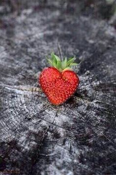 Hearts in nature ♥