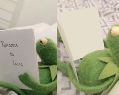 Kermit reasons to live