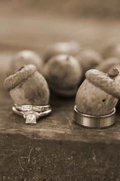 i dont really like this for the wedding but had to pin it cuz it made me laugh and think of Ice age!! the lil squirrels getting married lol