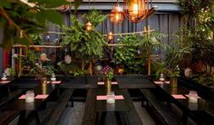 Serving an enormous variety of Japanese dishes, The DUDU is one of Berlin's sushi hotspots.