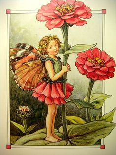 "Cicely Mary Barker ""Cicely Mary Barker June 1895 – 16 February was an English illustrator best known for a series of fantasy illustrations depicting fairies and flowers. Cicely Mary Barker, Fairy Dust, Fairy Land, Fairy Tales, Flower Fairies Books, Fairy Pictures, Fairytale Fantasies, Vintage Fairies, Zinnias"