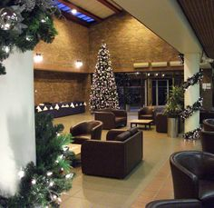 decorate your business premises this festive season with help from ambius uk christmas displays christmas