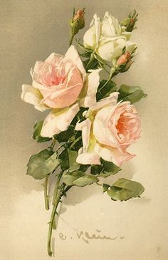 Anemones ~ Catherine Flowers ~ DIY Counted Cross Stitch Pattern Klein