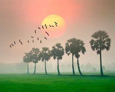 Bộ ảnh tuyệt đẹp về đất nước con người Việt Nam
