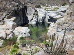 Cascadas del cañón de la Zorra. Sierra de la Laguna. Baja California Sur (México) Un chapuzón salvaje en el desierto espinoso de la sierra de la Laguna, entre cactus cardones, torotes, mezquites, nopales, pitayas… /    TURISMO DE BAJA CALIFORNIA SUR