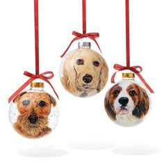 Christmas Ornament  Send in a picture of your pet and get back an heirloom. From Oprah's Favorite Things