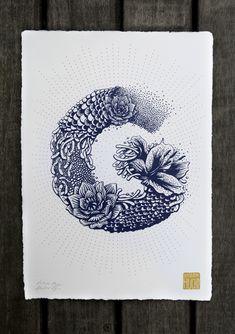 Typography - Alphabet Illustred by Valérie Hugo - Letter G