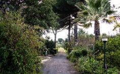 Il giardino del nostro B&B dove dormite a Valverde (CT) Sicilia